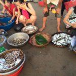 Kinh nghiệm đi biển Hải Hòa cho những người thích khám phá